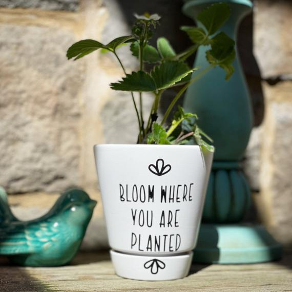 Bloom Where you are Planted Flower Pot Mother's Day | Etsy