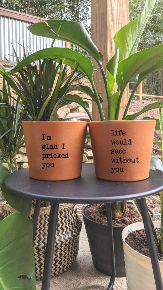 Plant Pun Pots Punny Pots Terra Cotta Plant Pot Modern | Etsy
