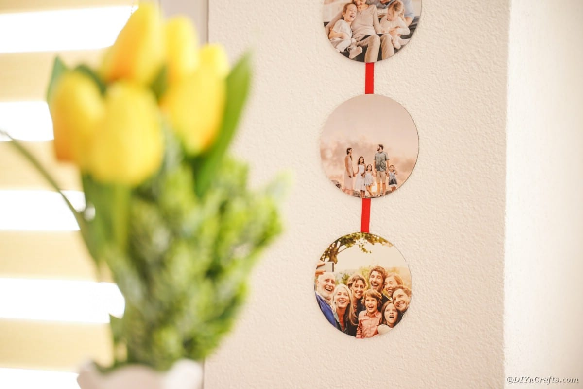 Foto su muro con tulipani gialli in primo piano