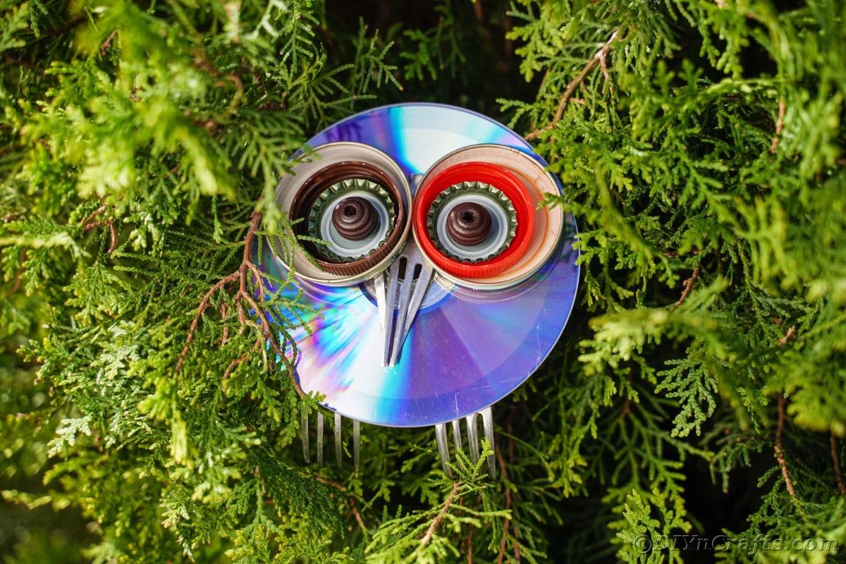 CD garden owl sitting in cedar shrub