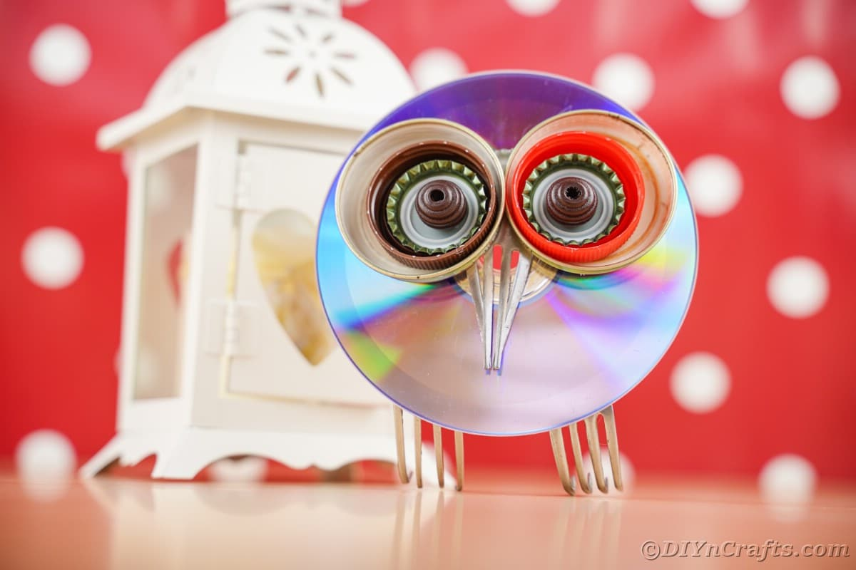 Red and white polka dot background with CD owl in front of it
