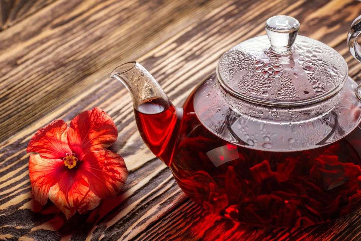Hibiscus in a clear teapot on top of a wooden table with a red fresh Hibiscus flower