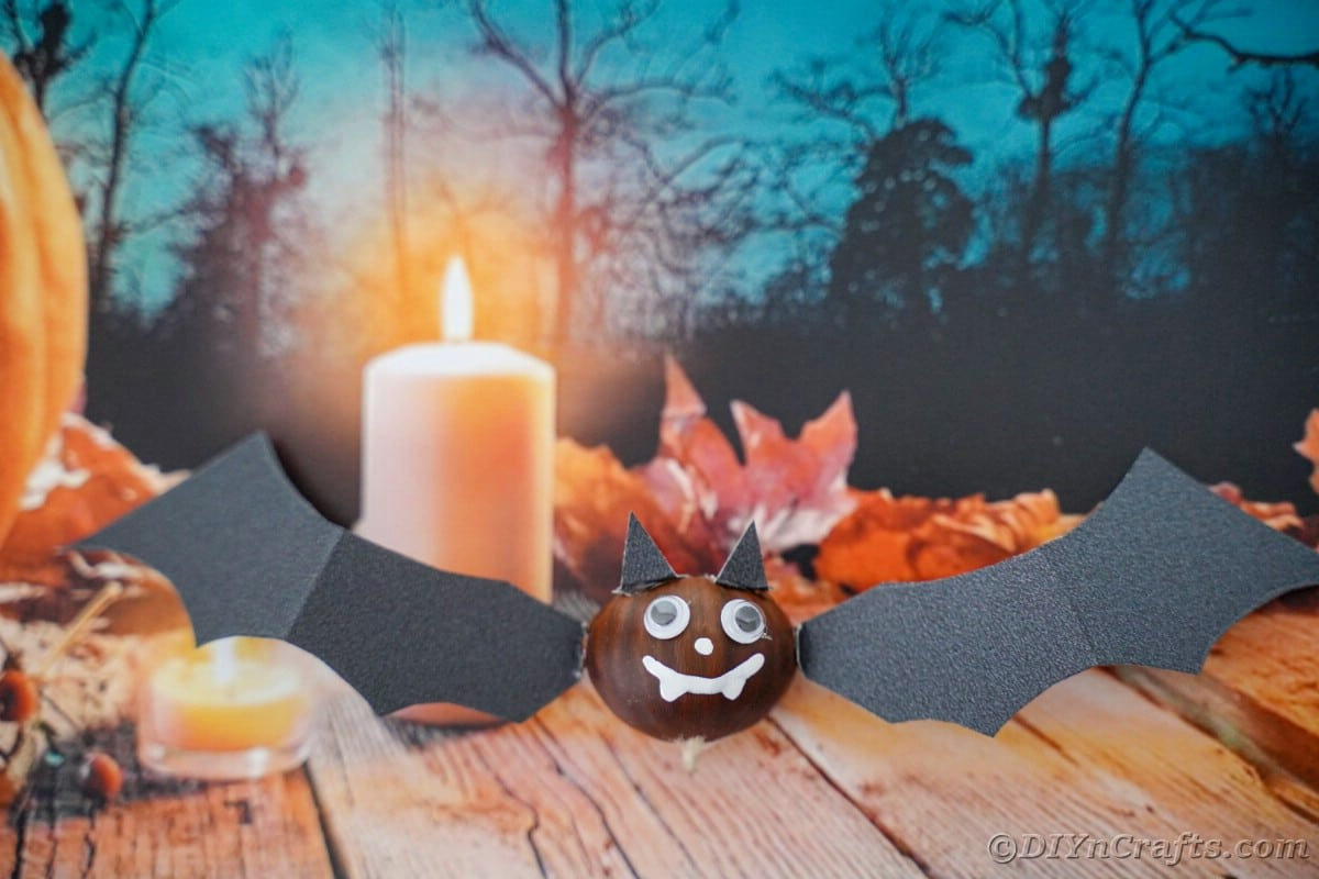 Halloween background with chestnut bat in foreground on table