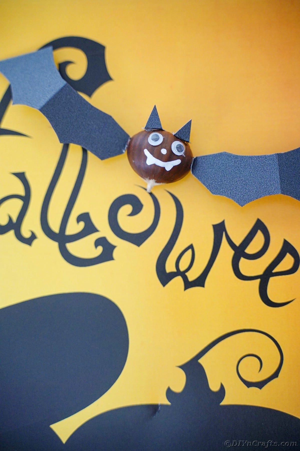 Chestnut bat laying on yellow and black halloween paper