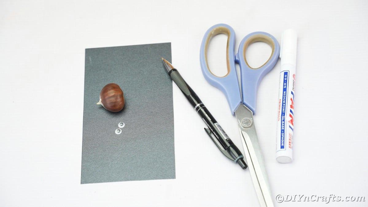 Black paper chestnut scissors and pen on white table