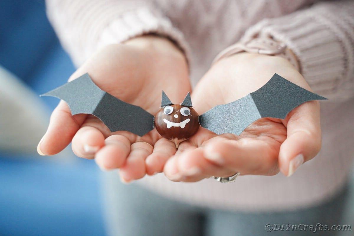 Chestnut bat in hands