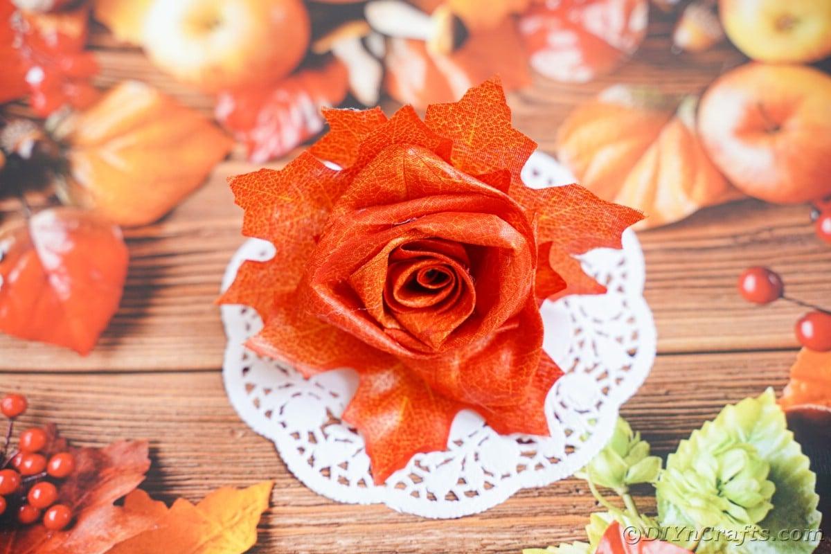 Fake orange doily on flower