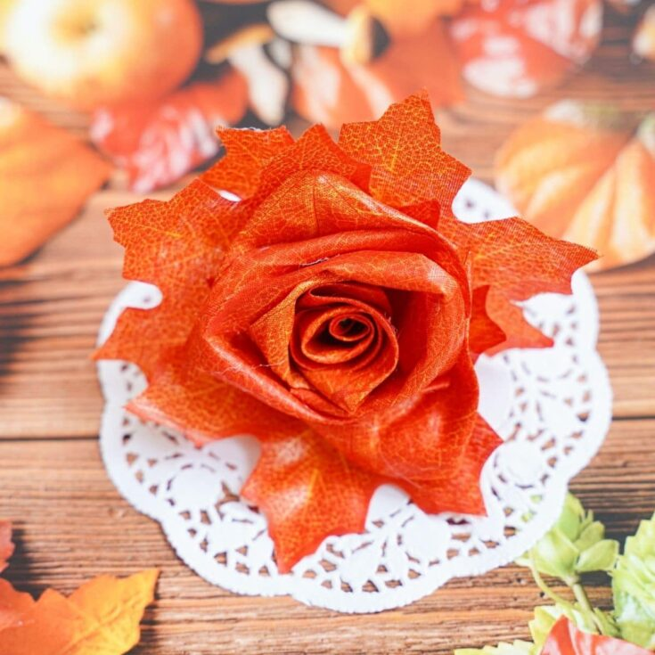 Fake orange flower on doily
