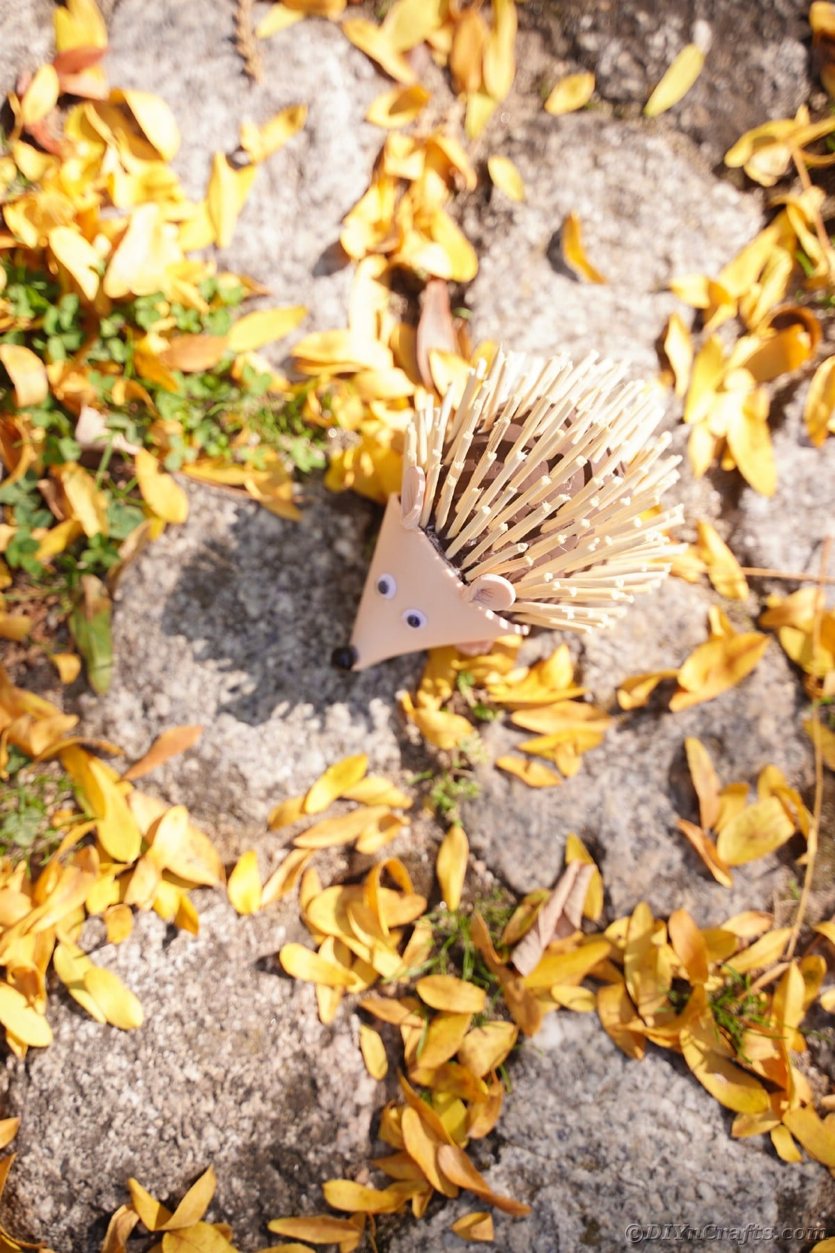 Foam hedgehog laying on cobblestone and yellow leaves