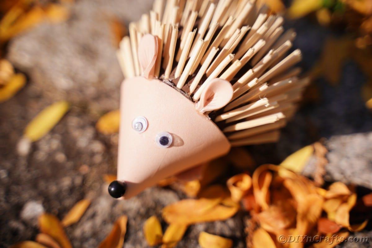 Fallen leaves underneath mini hedgehog toy