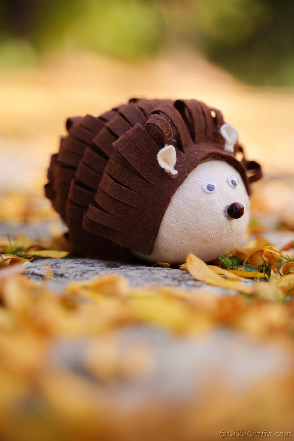 Stuffed toy hedgehog on ground outside by leaves
