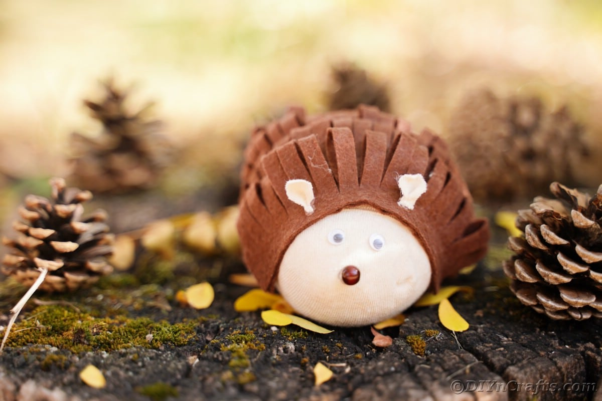 Toy hedgehog on stump with leaves