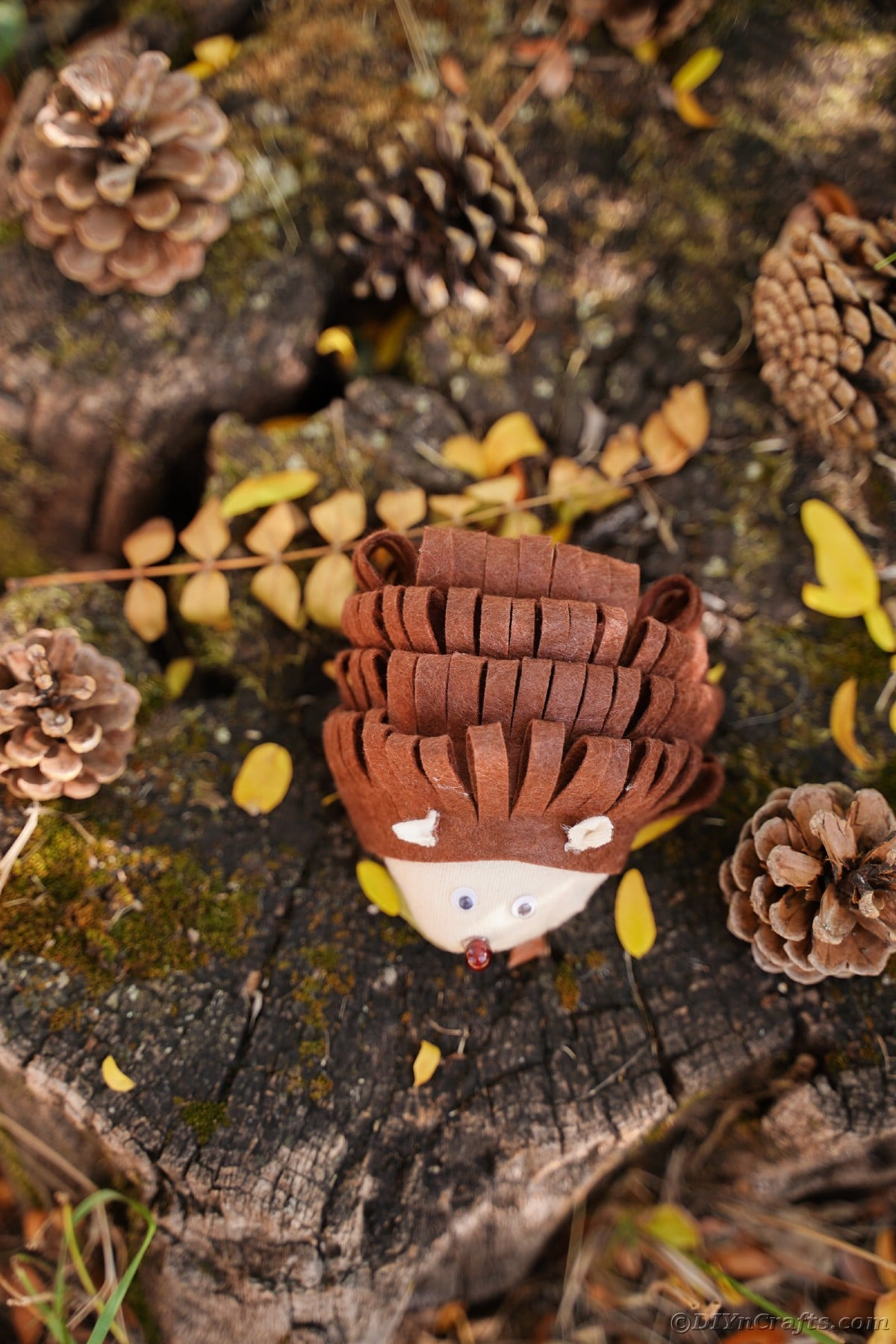 Image looking down onto top of no sew fabric hedgehog on stump
