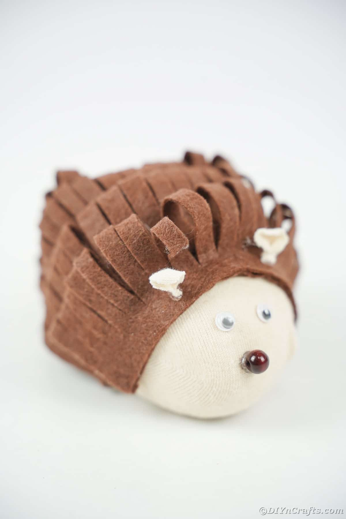 White background with stuffed hedgehog
