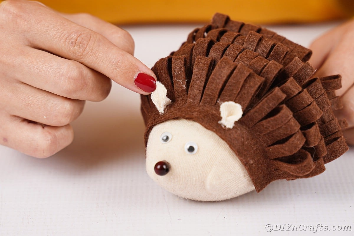 Hands gluing ears onto top of hedgehog