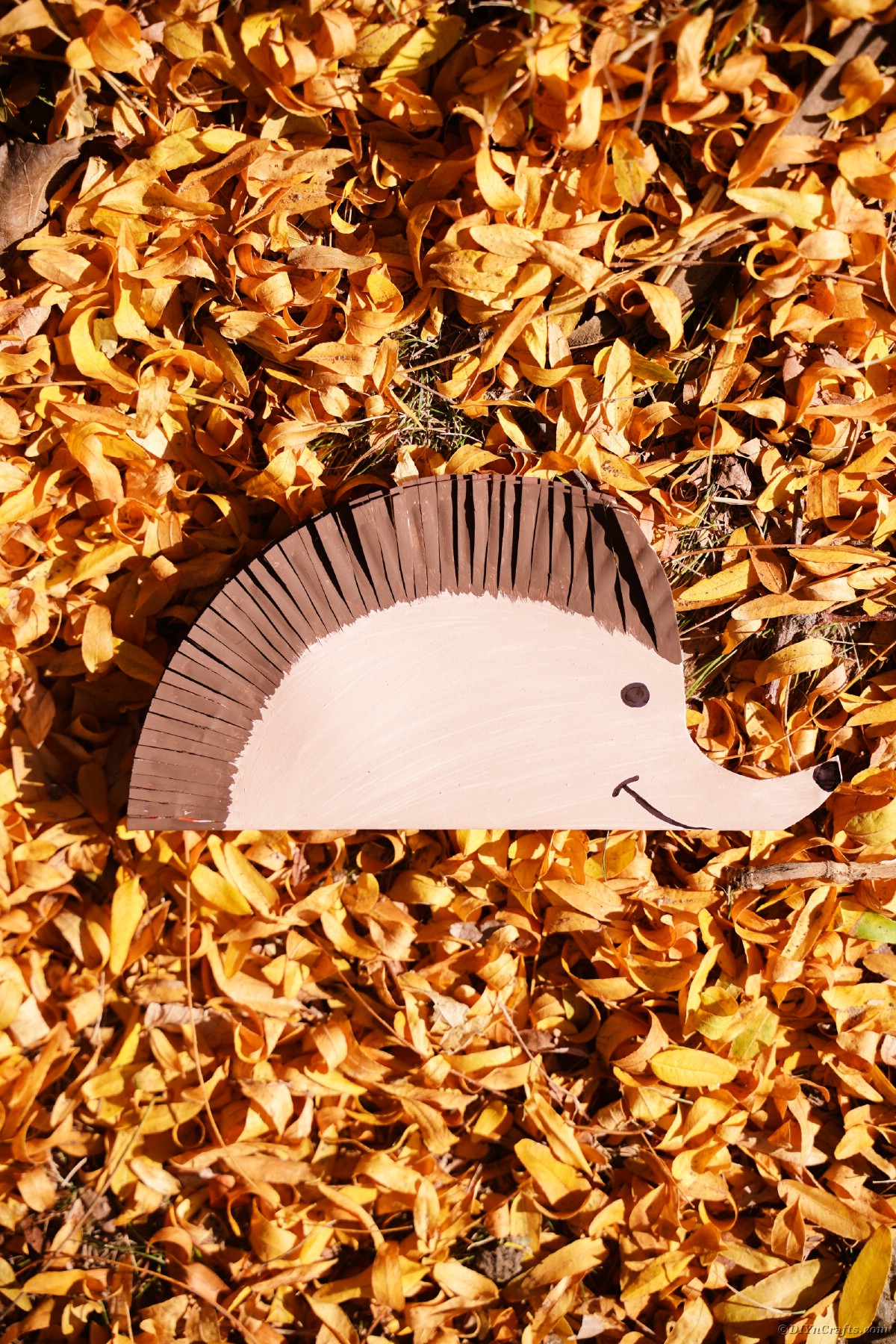 Yellow and gold leaves on ground topped by paper hedgehog decoration