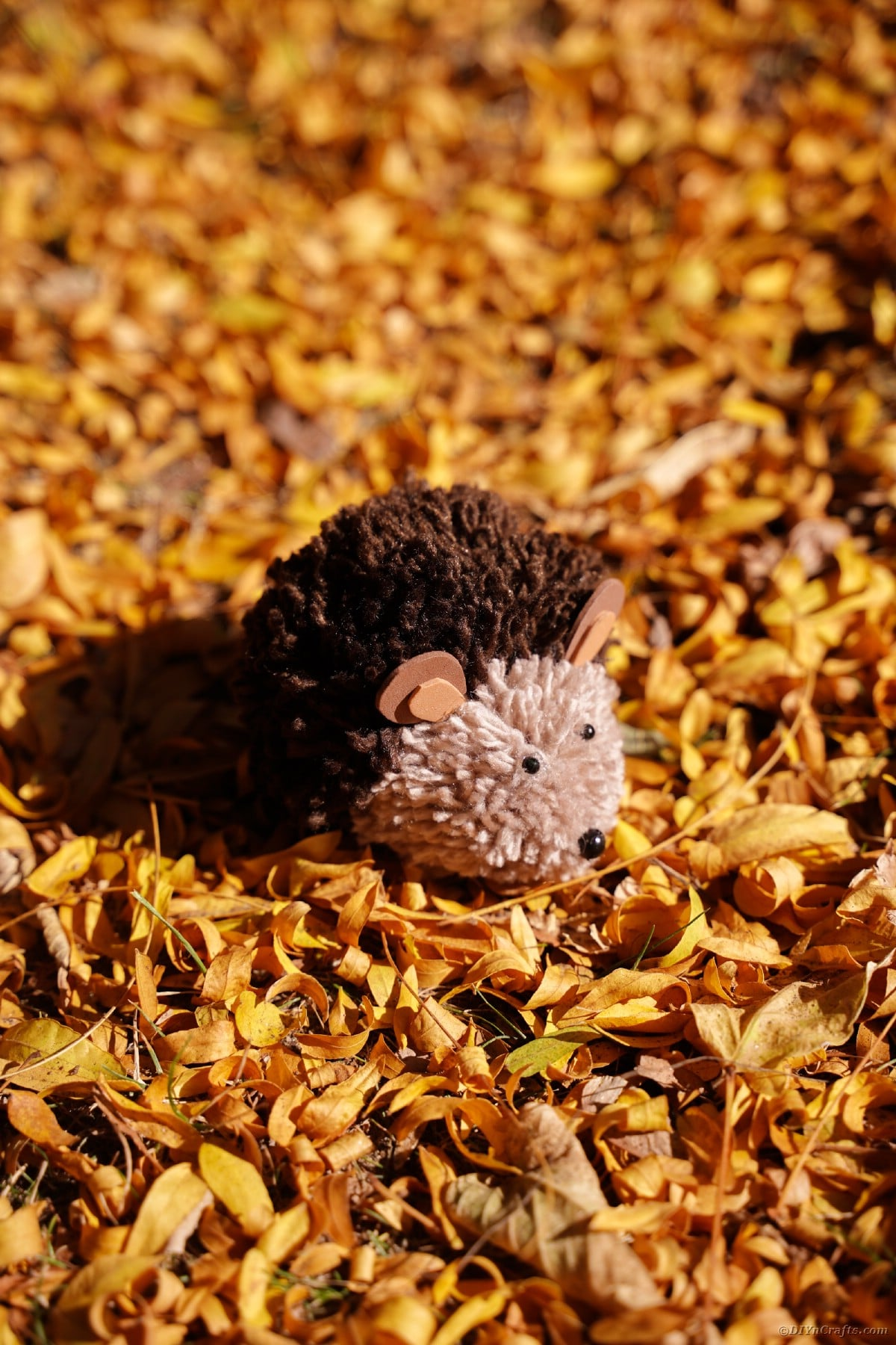 Toy hedgehog on pile of yellow leaves