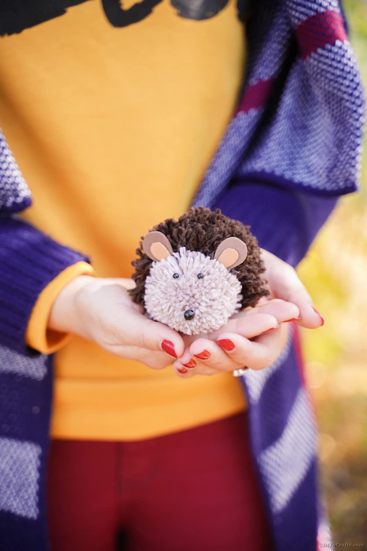 Donna in maglietta arancione che tiene un riccio giocattolo