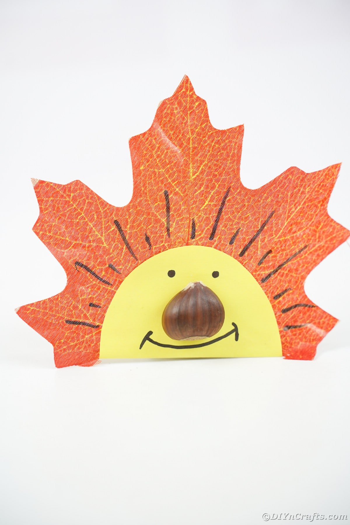 Fake leaf face with chestnut nose on white table