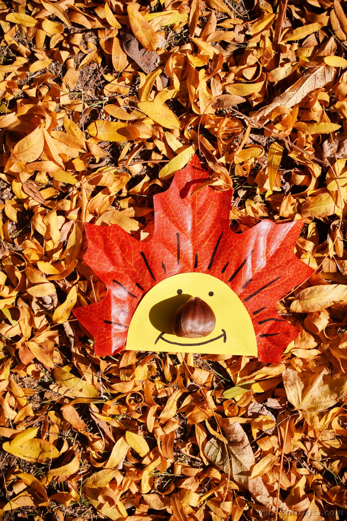 Happy face on fake leaf that is laying on fallen leaves