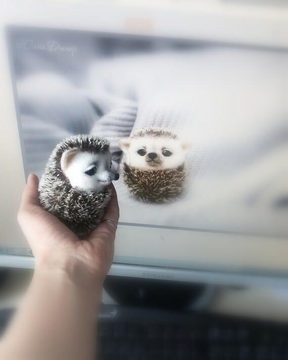 Needle felted hedgehog. Baby hedgehog woodland animal. Felted | Etsy
