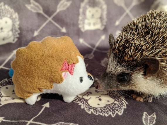 Muffin The Mint Stuffed Hedgehog Toy | Etsy