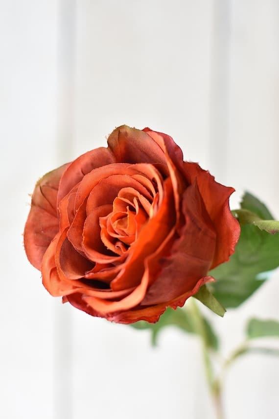 Faux Deep Orange Rose Stem | Etsy