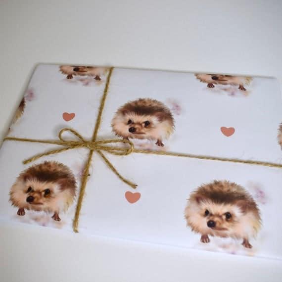 Hedgehog Wrapping Paper Hedghog Greeting Card Hedgehog Gift | Etsy