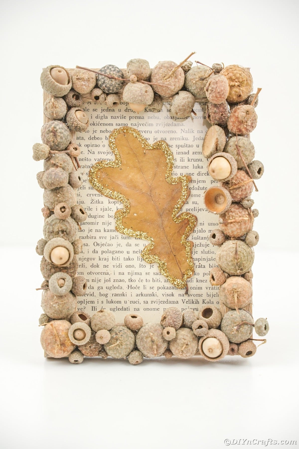 Acorn cap frame with book page and leaf inside