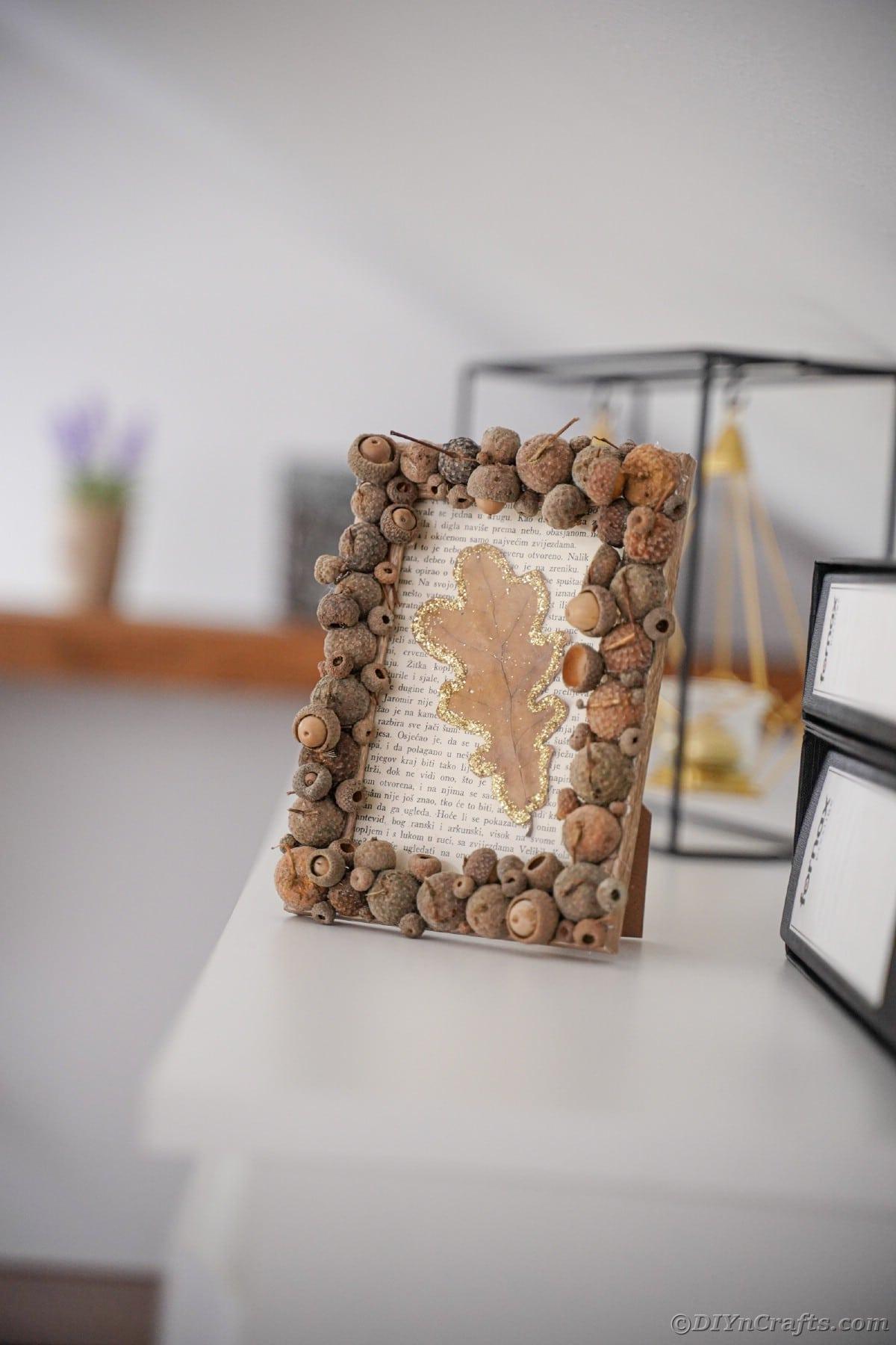 Acorn cap picture frame on white shelf