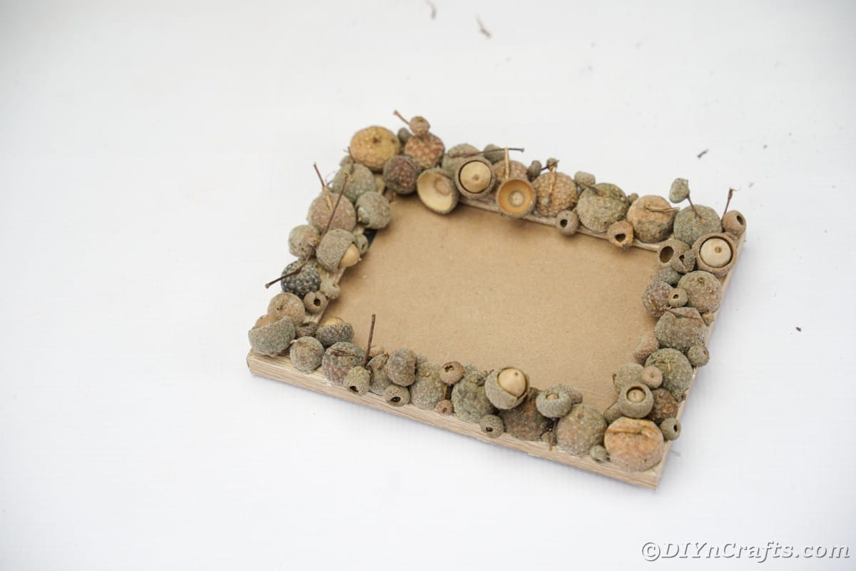 Picture frame with acorn caps around edges