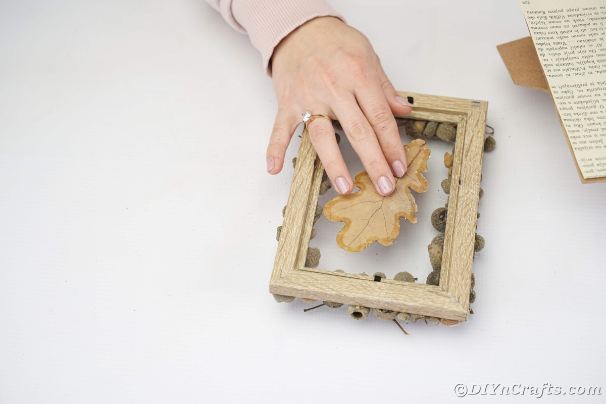 Hand holding leaf on picture frame glass