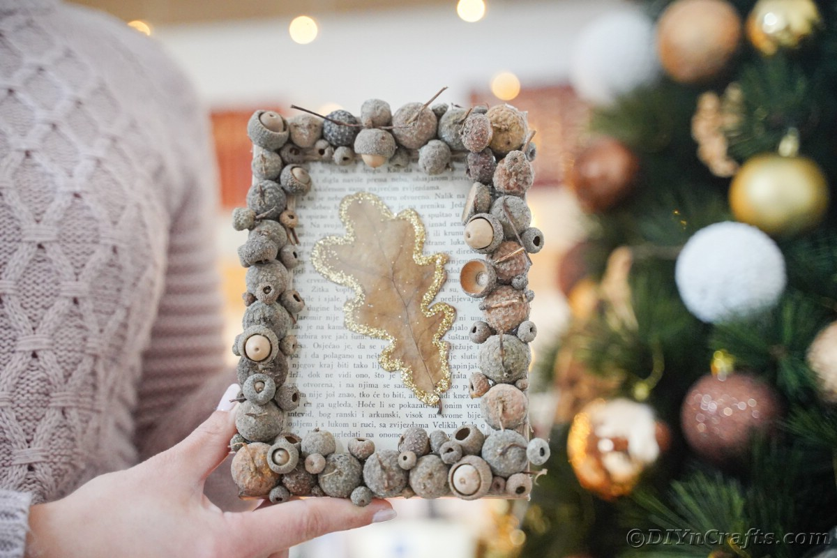 Acorn cap frame with leaf held in front of holiday tree