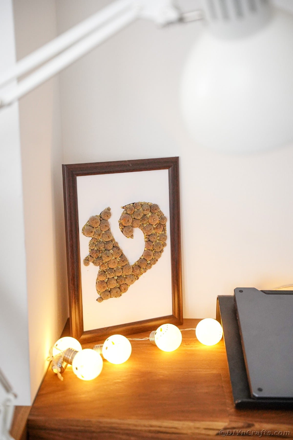 Acorn cap squirrel framed and sitting on table with string of bulb lights