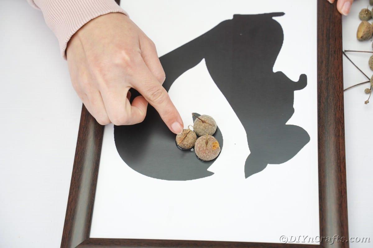 Finger holding an acorn cap onto black squirrel in frame