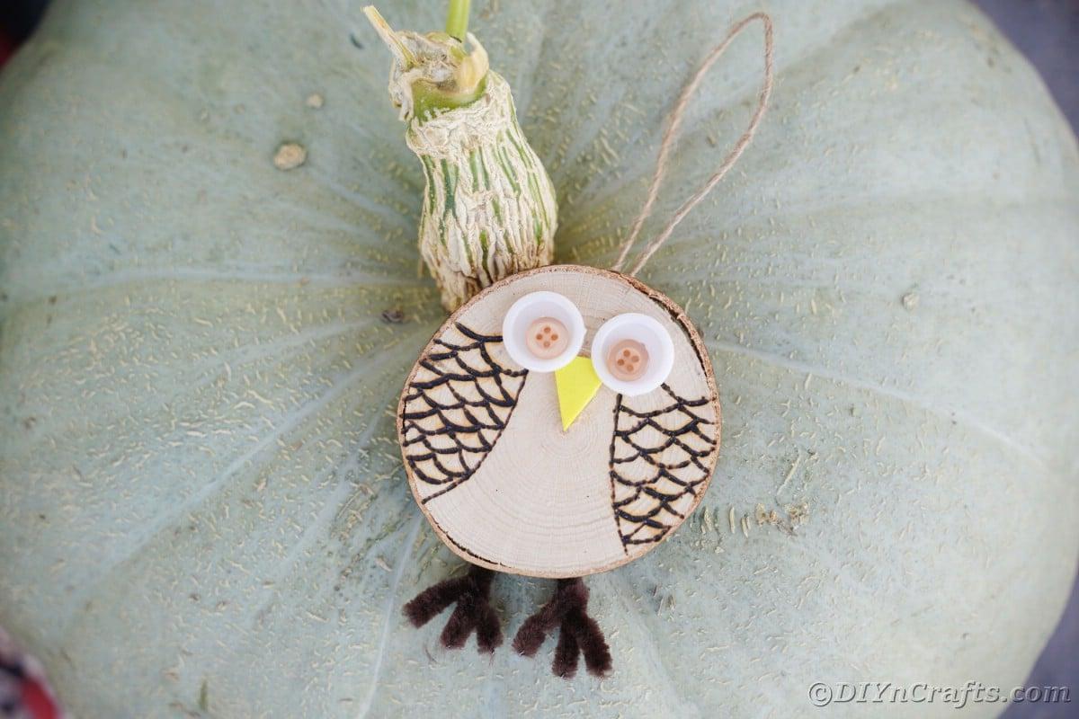 Ornamento de madeira de coruja em cima de abóbora verde