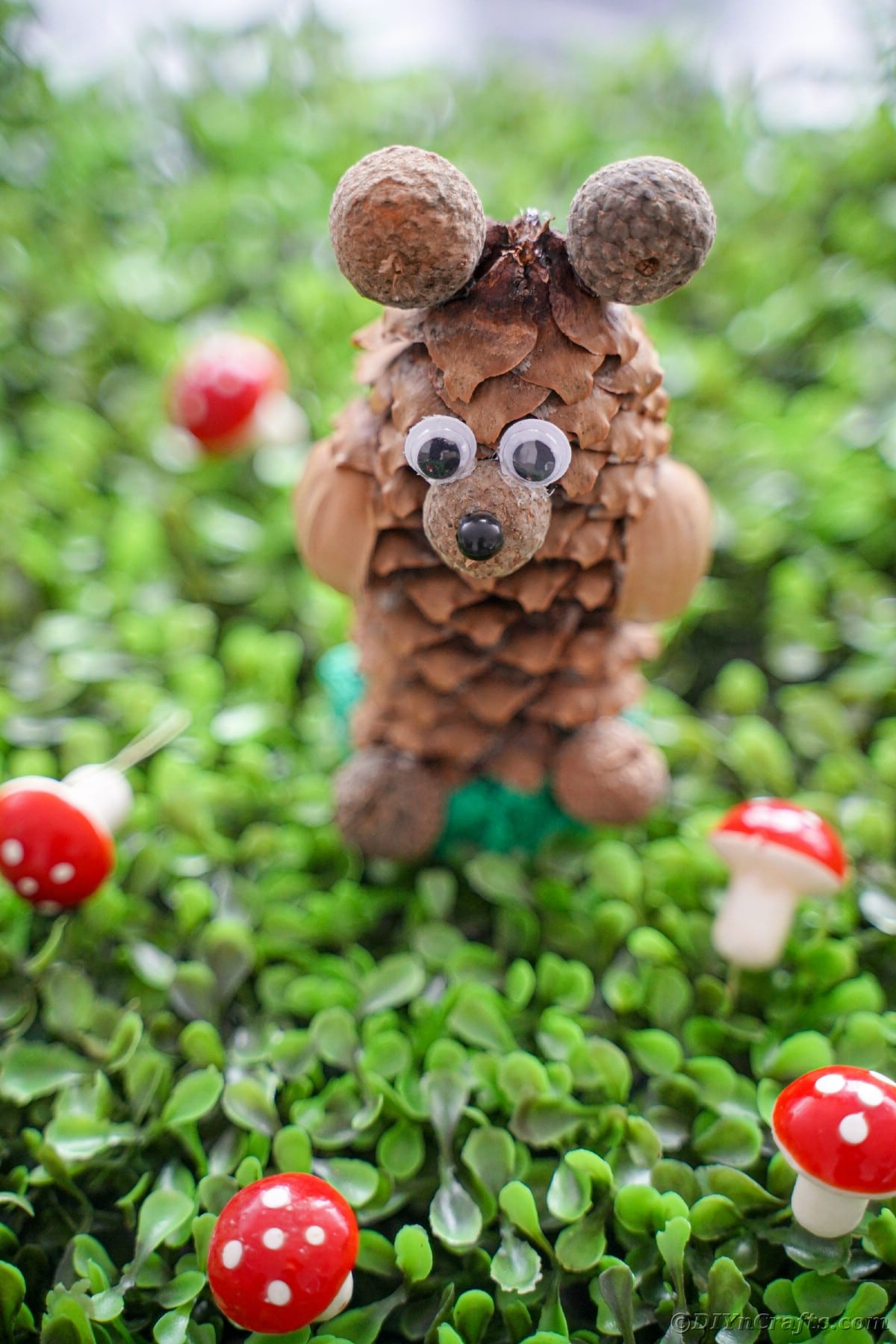 pinecone bear sitting on clover with mini toadstools