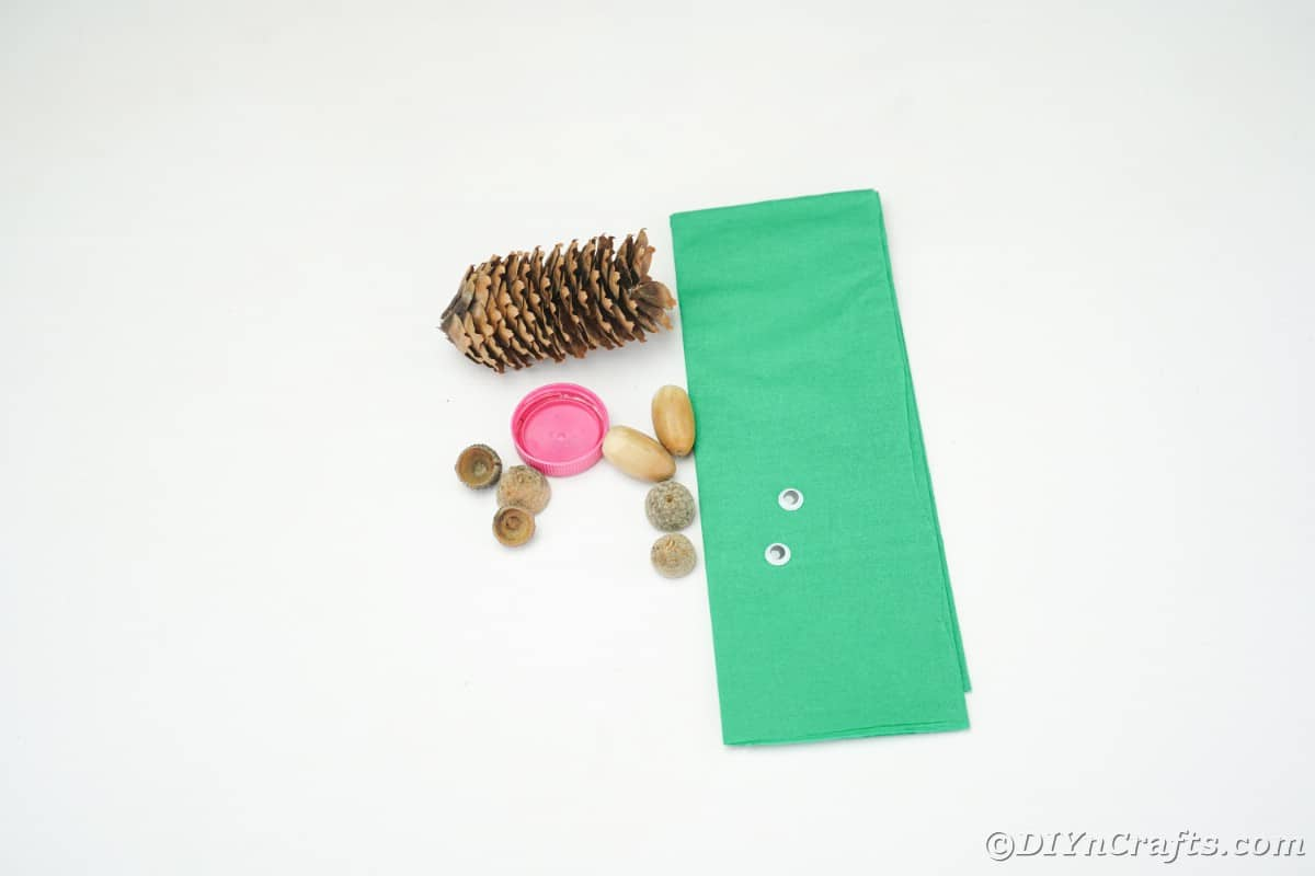 pine cone green paper bottle cap and acorn caps on white table