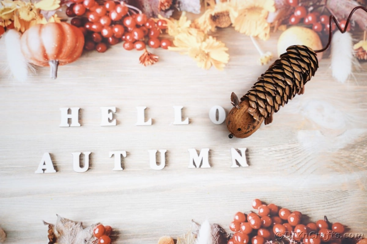 hello autumn written in white letters on fall paper underneath fake mouse