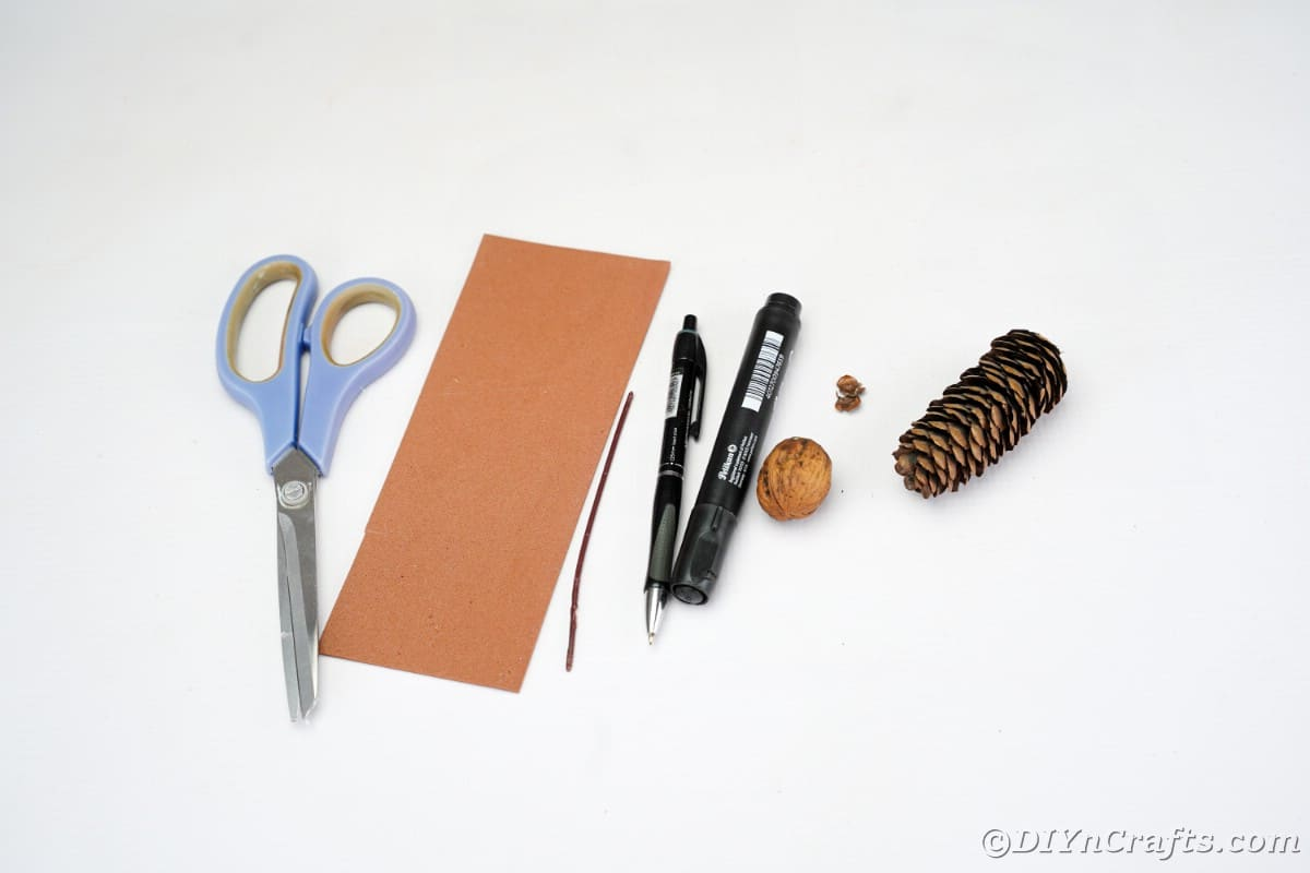 scissors brown paper markers pecan and pinecone on white table