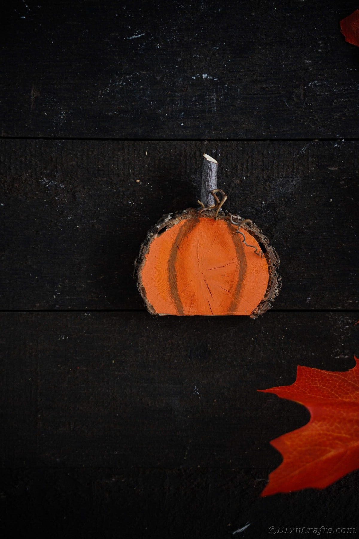 Wood slice pumpkin on black background