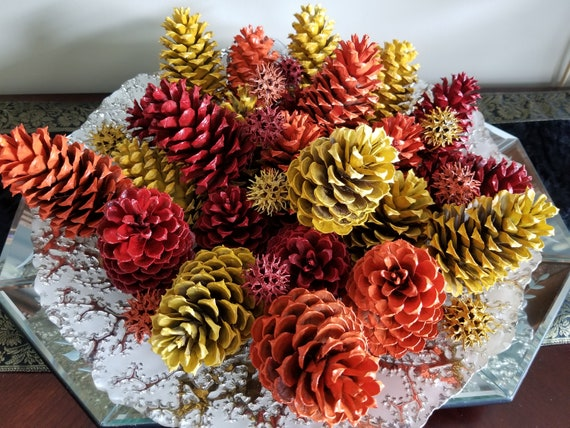 24 Fall Colors Painted Pinecones and 12 Sweetgum Pods - 2 Dozens Autumn Pine Cones and 1 Dozen Sweetgum Pods